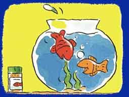 Chansons le poisson rouge - Le petit poisson rouge maternelle ...